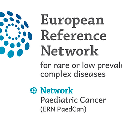 The European Reference Network on Paediatric Cancer (ERN PaedCan)
